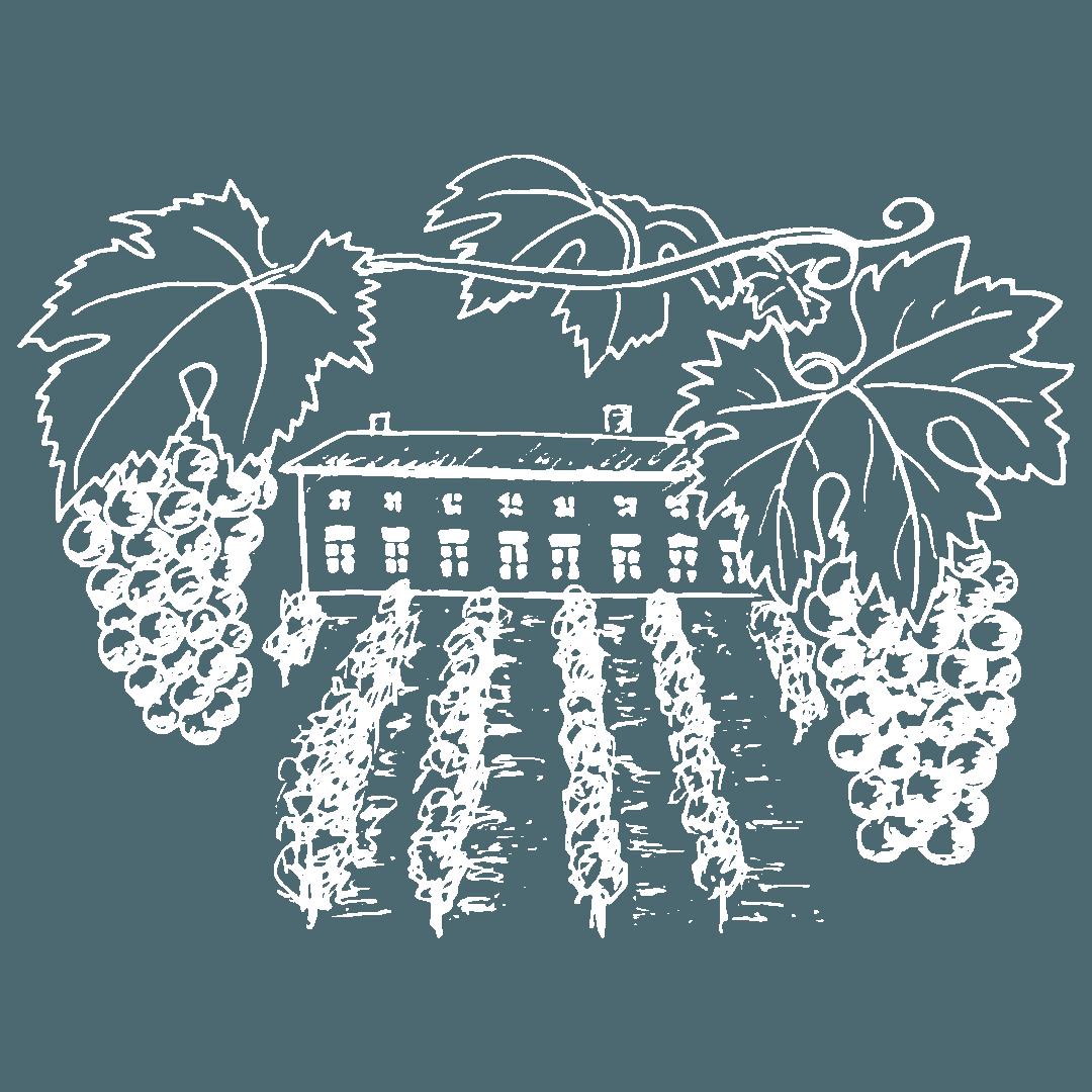 vente directe du vigneron aux consommateurs, vins de Savoie, Domaine les Vignes de Fechy, vins de Féchy, vins de Cruseilles, Cruseilles, Annecy, Genève, Haute Savoie