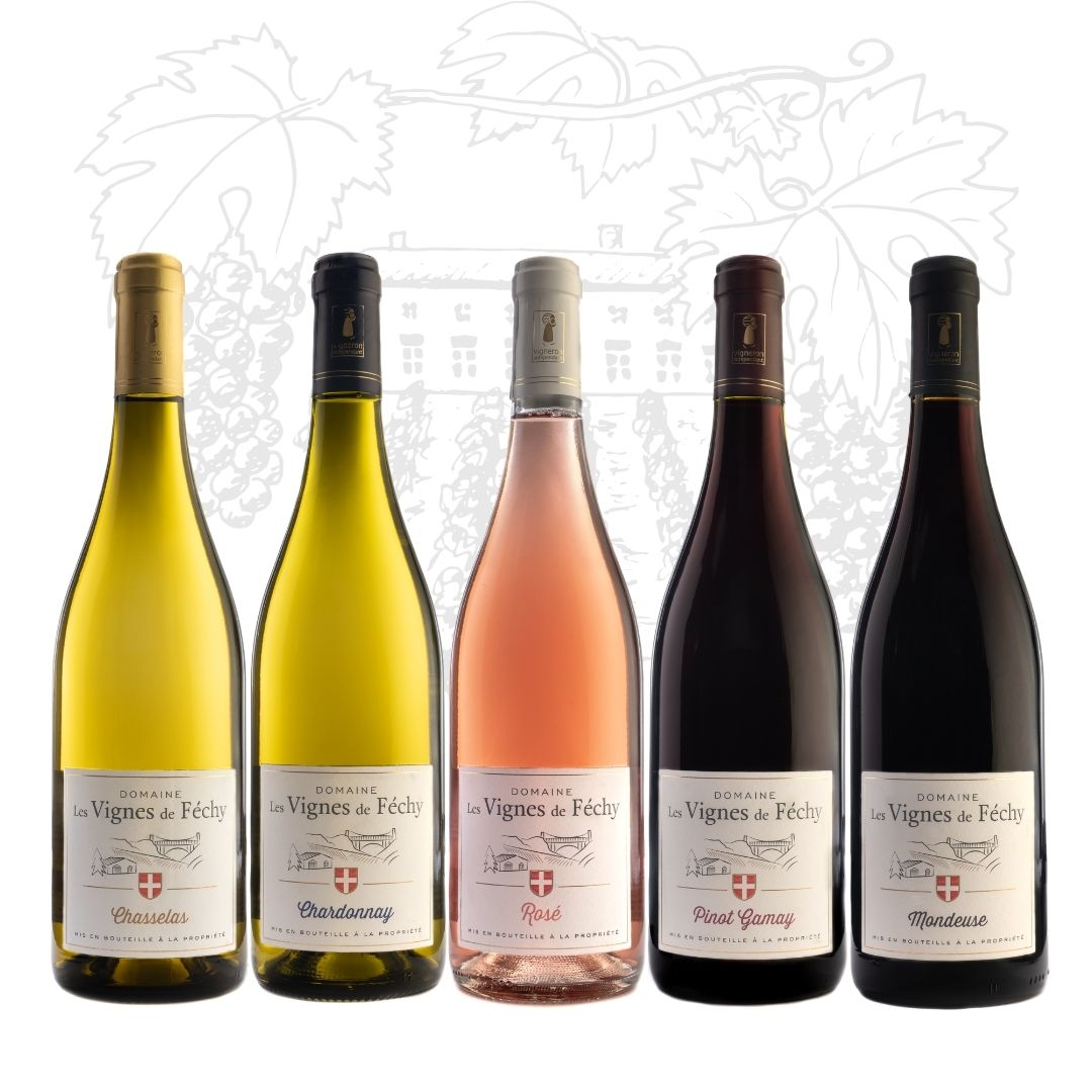 vins de Savoie, vin de Savoie, coffret de vins de Savoie découverte, Domaine les Vignes de Fechy, vins de Féchy, vins de Cruseilles, Cruseilles, Annecy, Genève, Haute Savoie